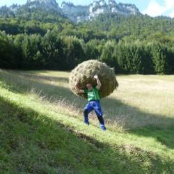 Landleben-live Erwachsene